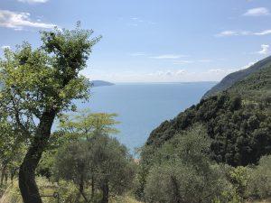 Auszeit Gardasee - Naturheilpraxis Gerlinger Heide